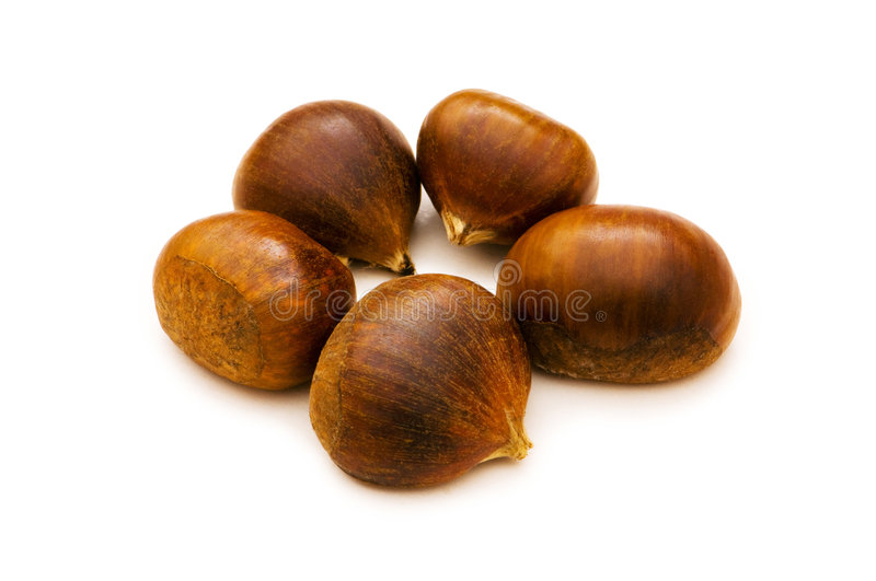 Many chestnuts isolated. On the white background royalty free stock photo