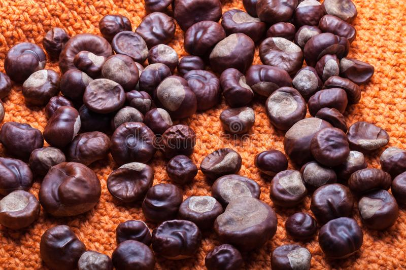 Many chestnuts on a knitted orange background stock photos