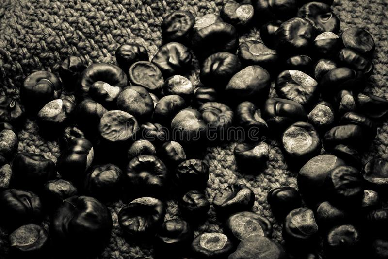 Many chestnuts on a knitted orange background. Toned royalty free stock photography