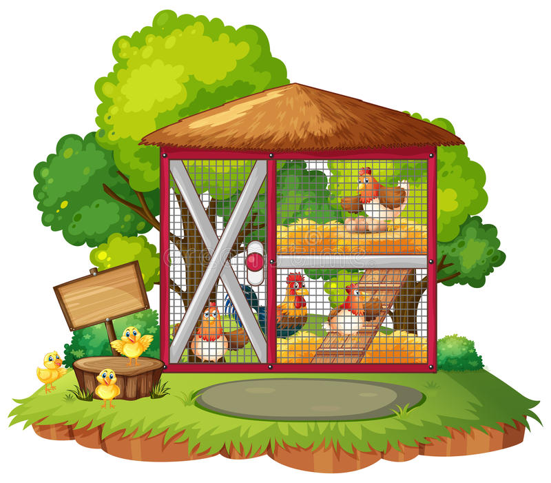 Many chickens in the coop vector illustration
