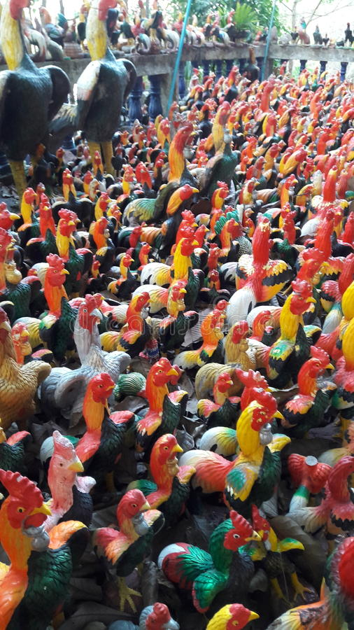 Many chickens royalty free stock image