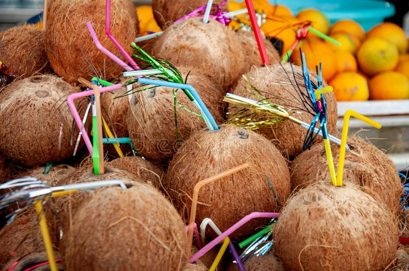 Many coconuts with a straw in a street shop. Exotic fruits. Interesting product. Fresh coconut is ready to eat. Many coconuts with a straw in a street shop royalty free stock images
