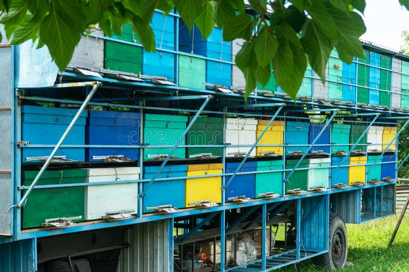 Many colorful houses for bees, standing one on the other. Honey harvest in mountainous areas in summer. Bees near the beehives in. The apiary stock photo