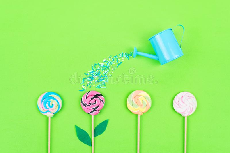 Many colorful lollipops and garden watering can on green pastel background. Minimal modern party, festive background. Flat lay, stock image