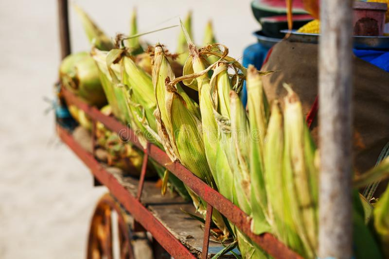 Many corn cobs in the cart. Rows of corn in the shell, lay in piles. Indian, Asian street food. Beach at GOA Sunset.  stock images