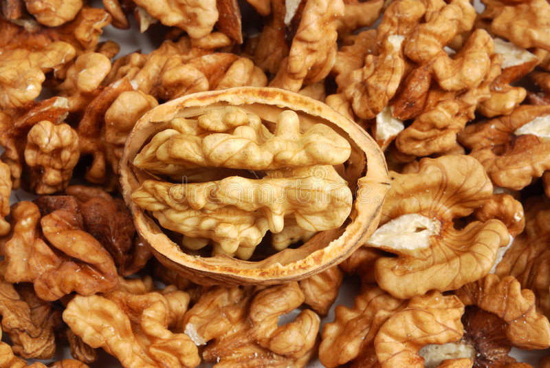 Download Many cracked walnuts stock photo. Image of nuts, nutritional - 3270604