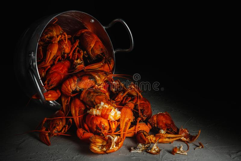 Many crawfish in an aluminum pan on a dark background. Many crawfish in an aluminum pan on a dark background stock photo