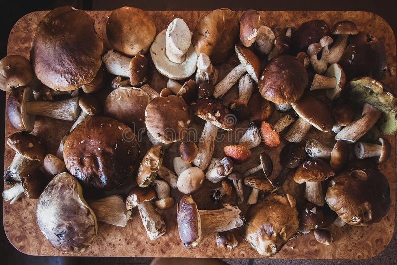 Many different mushrooms lie on the table royalty free stock image