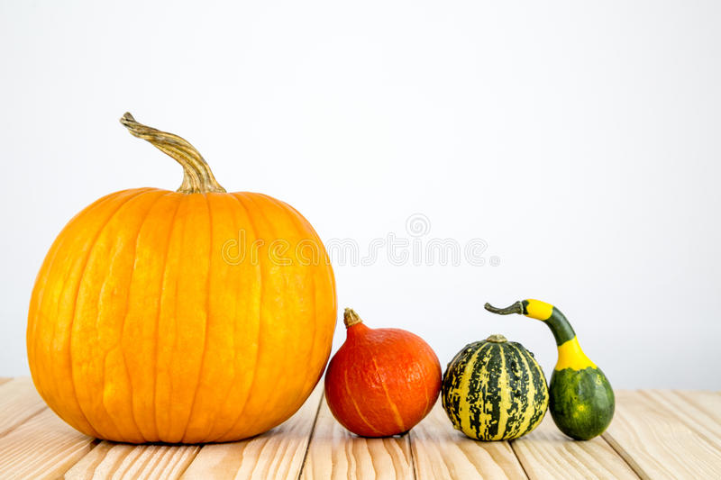 Many different pumpkins lie on wood royalty free stock photo