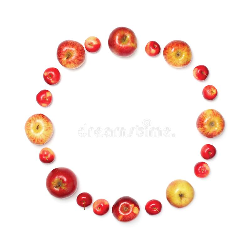 Many different size apples in the shape of circle isolated on white background. Top view stock images
