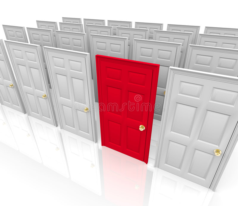 Many Doors - Which to Choose. Many doors stand before you... do you choose the red one vector illustration