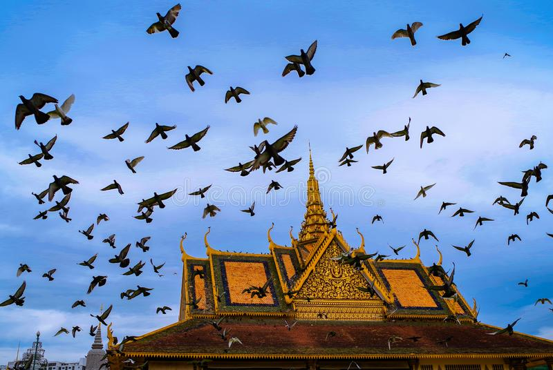 Peace Doves fly over the Royal Palace in Phnom Penh, Cambodia. Many doves fly above the royal palace and silver pagoda in Phnom Penh, the capital of Cambodia stock images