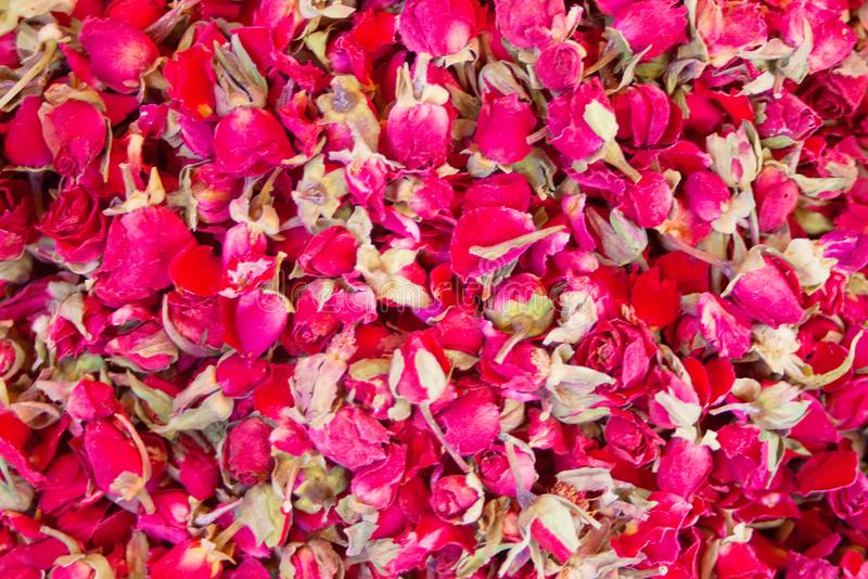 Many dry rose buds flowers for tea.  royalty free stock photo