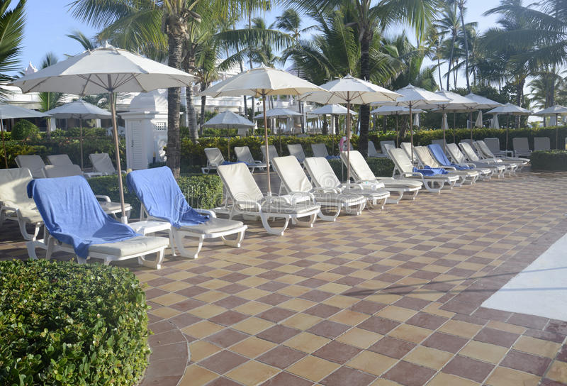 Many empty pool lounge chairs stock images