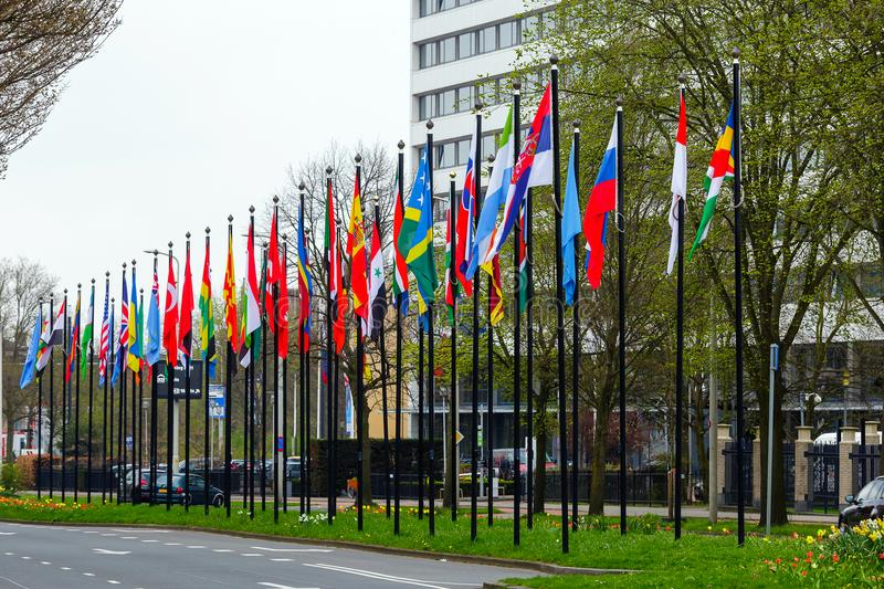 Many different flags street Europe members Union building countries nation road way grass flowers green color type The Hague stock images