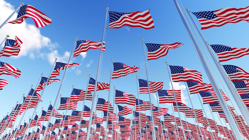 Many flags of USA on flagpoles against blue sky. royalty free illustration