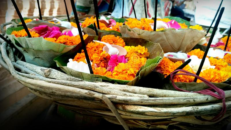 Many flower petals with beautiful colors. In Rishikesh royalty free stock photography