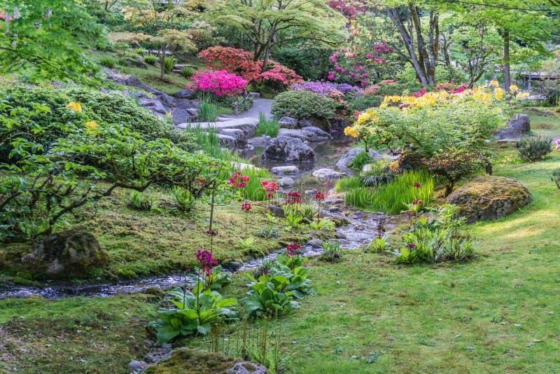 Spring Garden Profuions 4 royalty free stock photos