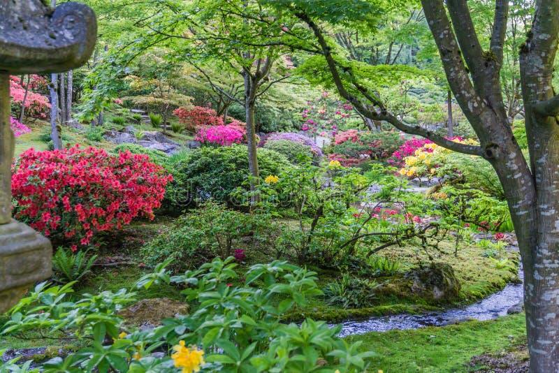 Spring Garden Profuions 2 royalty free stock photos