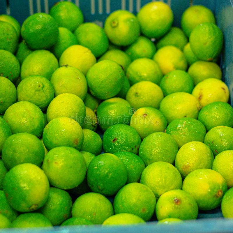 Many fresh green yellow lemons in a basket for the mojito party royalty free stock images