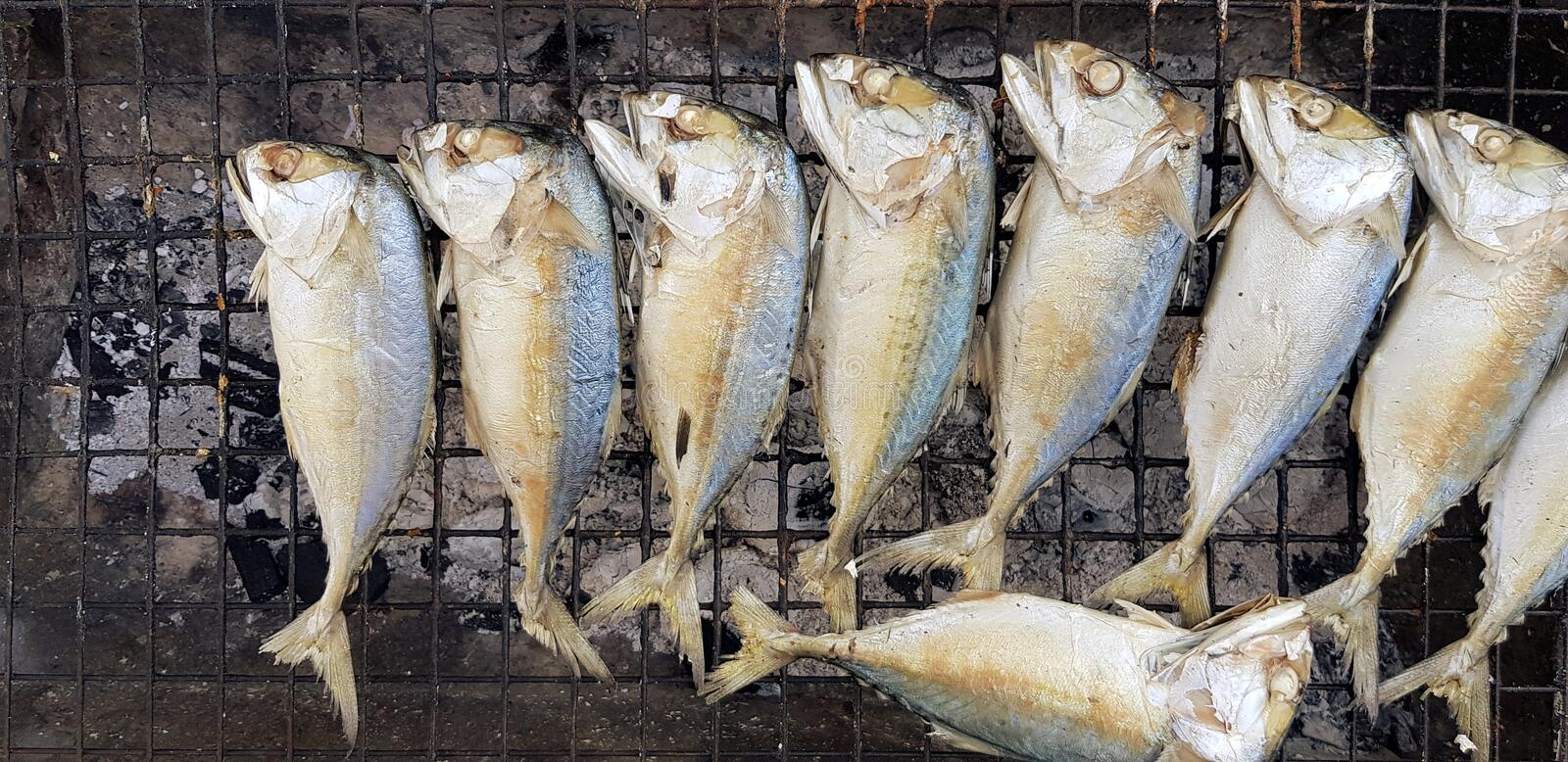 Many fresh mackerel grilled on net with charcoal stove at local street food market. stock images
