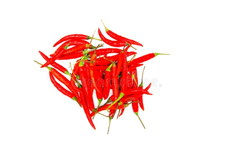 Many fresh red hot chili pepper isolated on white background stock images