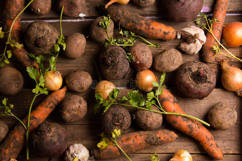 Many of fresh vegetables royalty free stock images