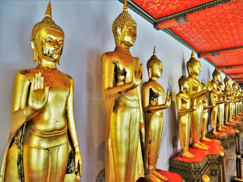 Golden Buddhas to infinity from thailand royalty free stock photo