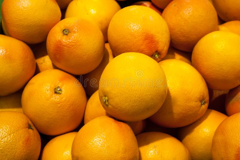 Many grapefruit fruits are ideal for the background image. Close-up royalty free stock photo