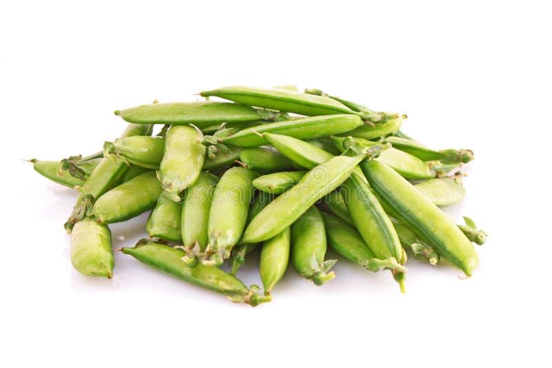 Many green peas stock photography