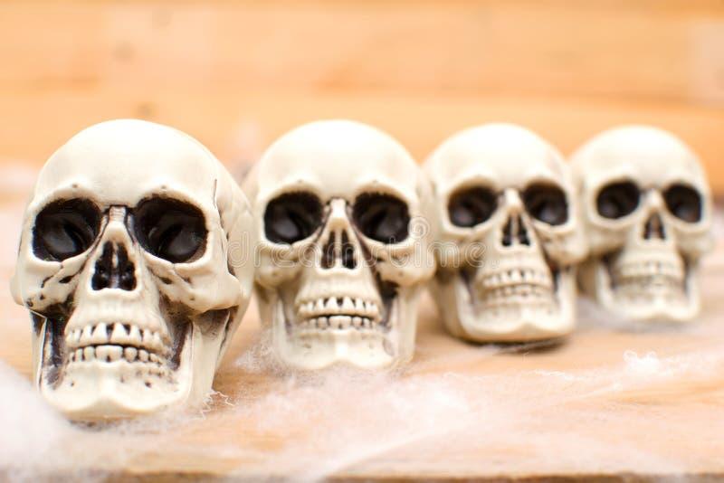 Many Halloween skulls royalty free stock photo