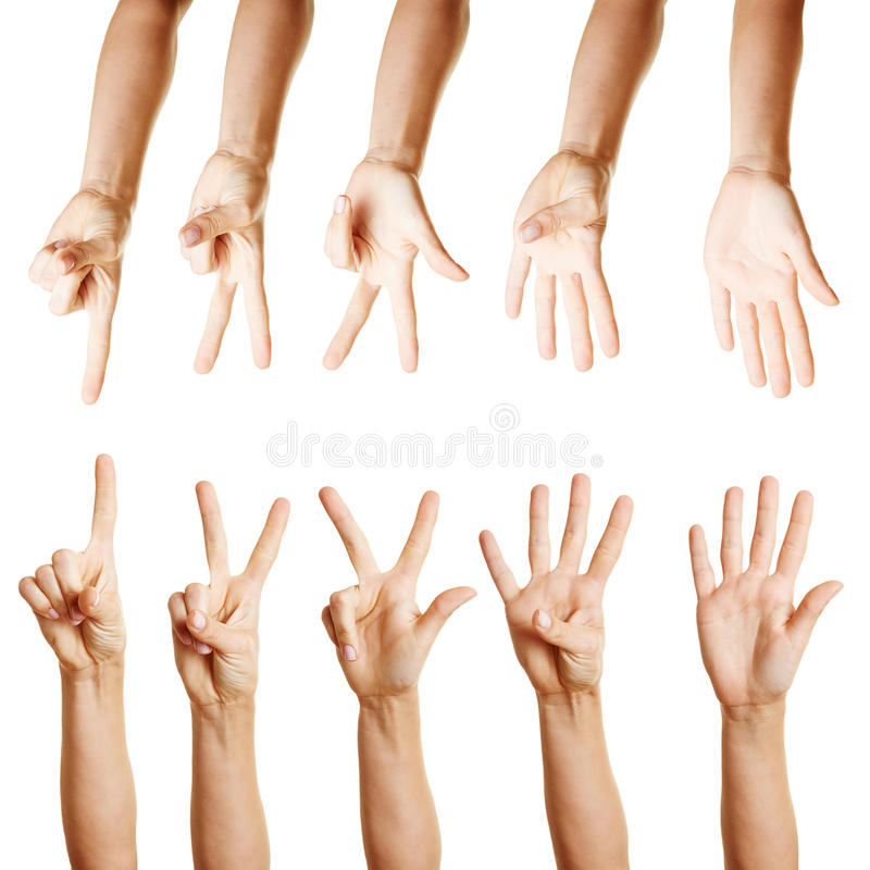 Many Hands Counting From One To Five Stock Photography