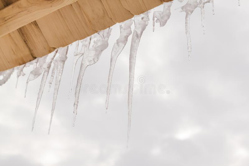 Many icicles melt on the wooden roof with water drops. Spring is comming. Many beautiful icicles melt on the wooden roof at the end of winter and water drops royalty free stock photo