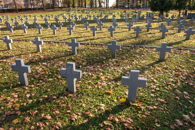Many identical gray crosses in polish military cemetery. autumn and sunset of life. struggle for congregation and independence of stock photo