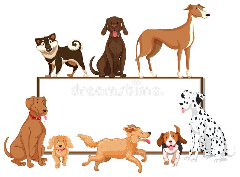 Many kinds of pet dogs on the board vector illustration