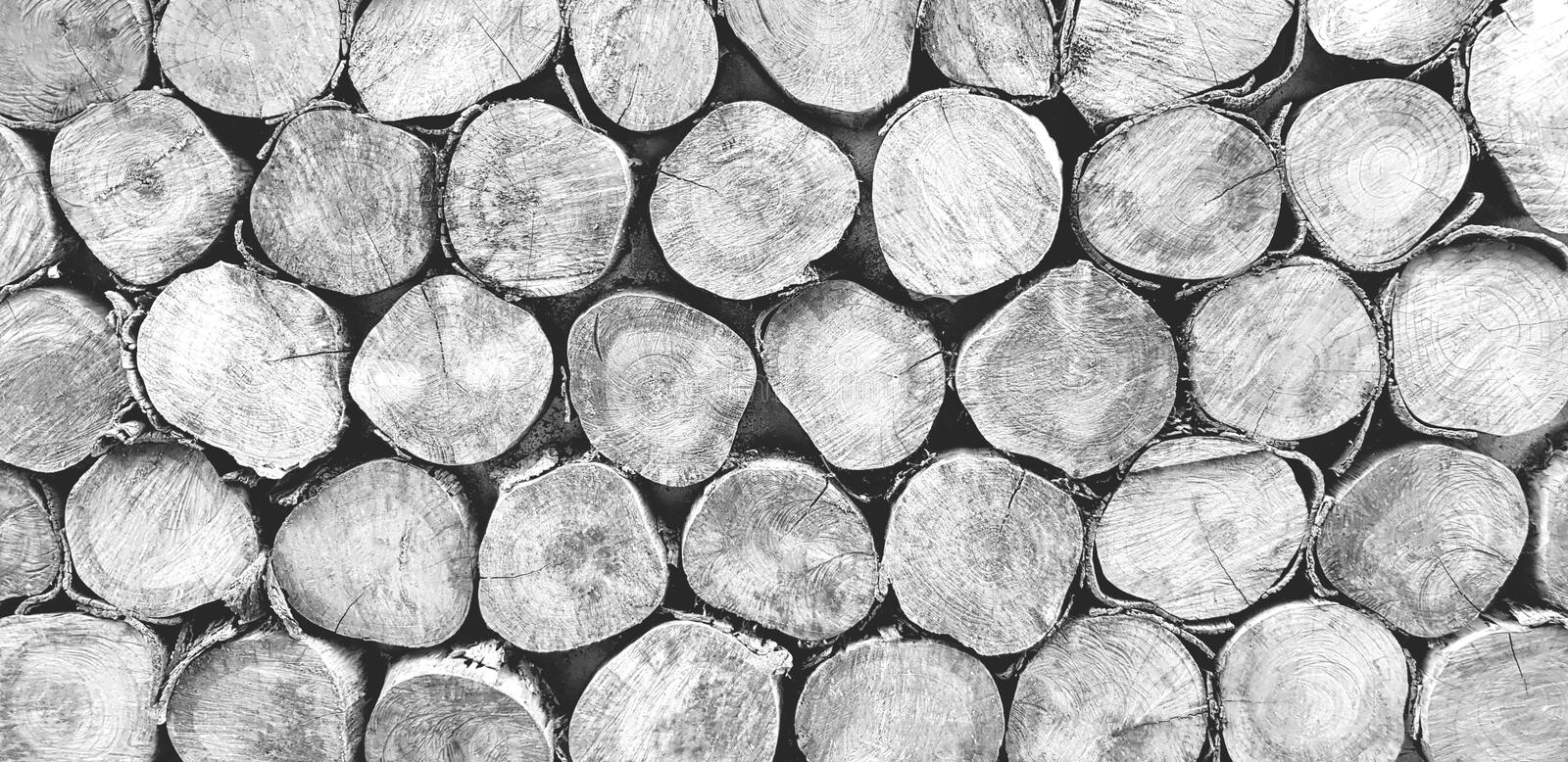 Many log, wood or timber stack for background in black and white tone. Art wallpaper, Natural material, Abstract and Round shape concept stock photography