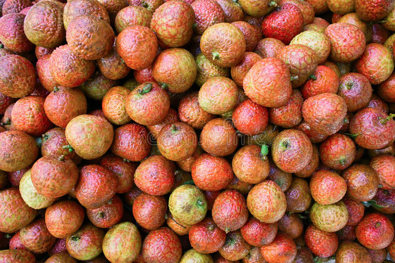 Download Many Mature Litchi Royalty Free Stock Image - Image: 20043036