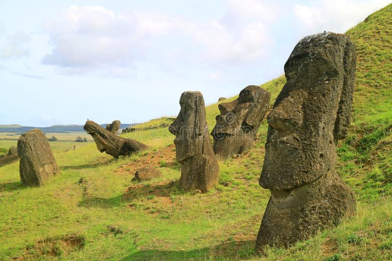 Many of Moai statues scattered on the slope of Rano Raraku volcano, Easter Island, Chile, UNESCO World Heritage. Archaeological Site royalty free stock photo