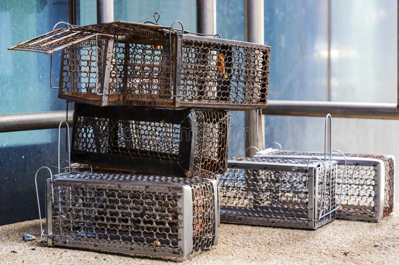 Many mouse trap cage put together both old and new Prepare to use. Selective focus royalty free stock photos