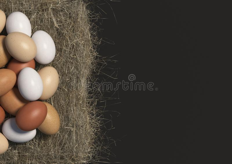 Many multi colored chicken eggs lie in bulk on a haystack on black background. Copy space. Top view. 3D render. Many multi colored chicken eggs lie in bulk on a royalty free illustration