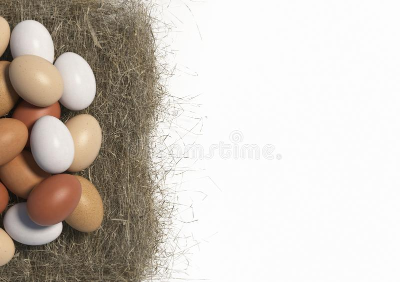 Many multi colored chicken eggs lie in bulk on a haystack on white background. Copy space. Top view. 3D render. Many multi colored chicken eggs lie in bulk on a stock illustration