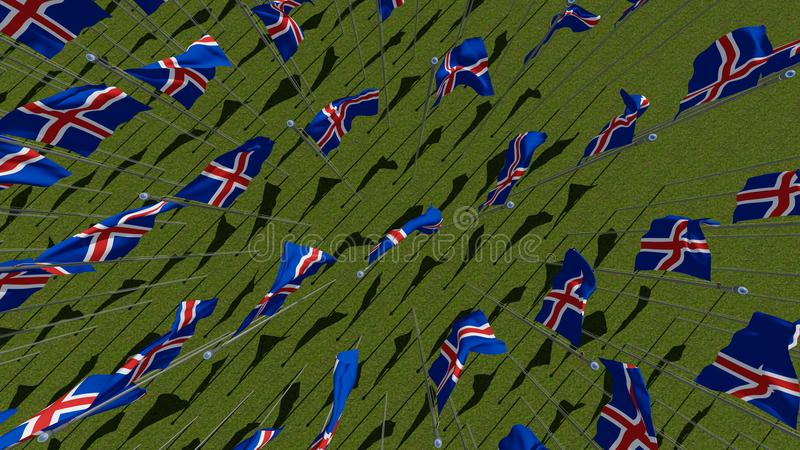 Many national flags of the Iceland waving on wind in green field. vector illustration
