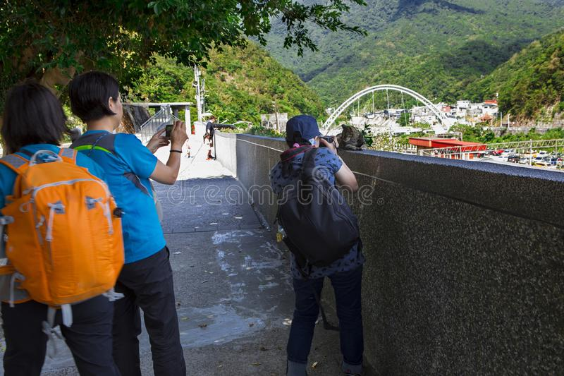 Many people focus on taking pictures, grab the cat funny picture. Taiwan`s famous tourist attractions, cat monk Ruifang Monkey Cave, tourists are taking pictures royalty free stock photos