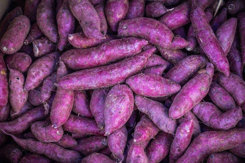 Many piles of purple sweet potato. Many piles of purple sweet potato in vegetable market royalty free stock photo
