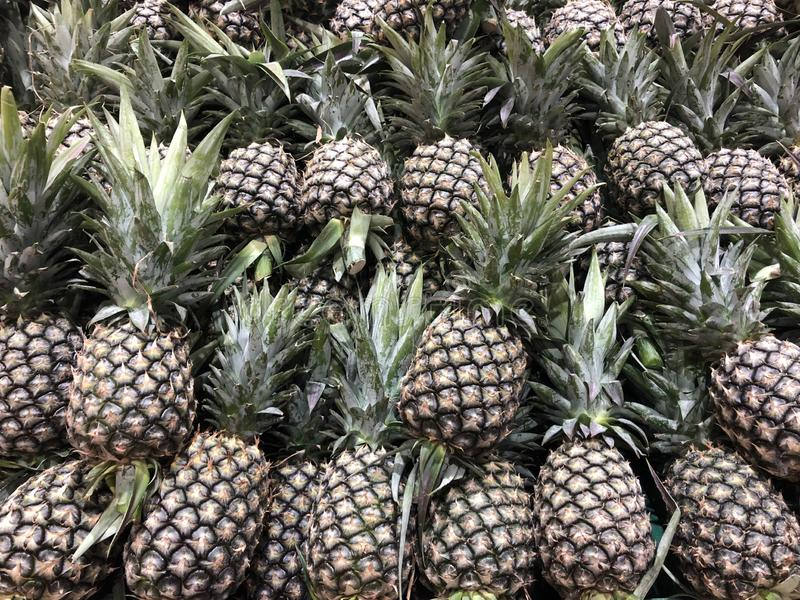 Many pineapple for sell stock photo