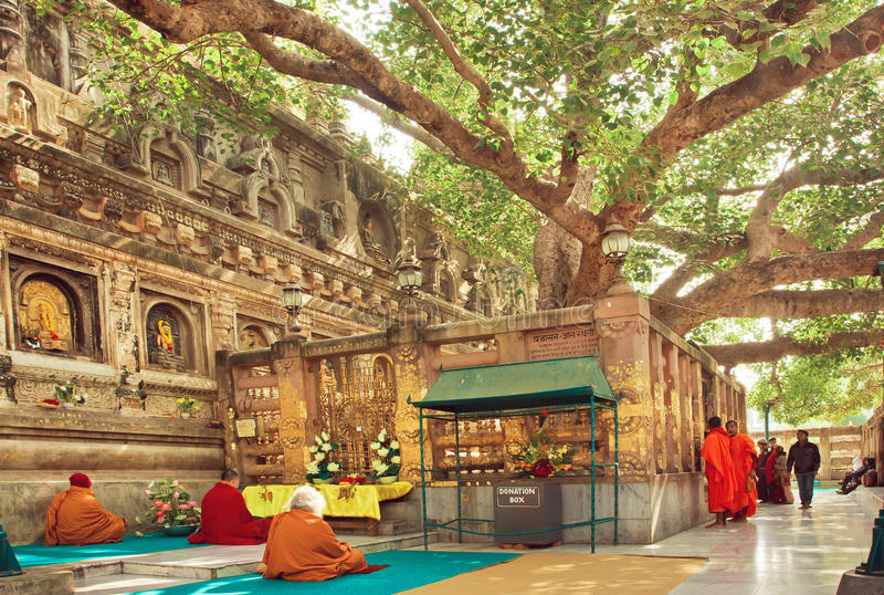 Many prayers sitting around the Bodhi tree, which the buddha became enlightened. BODH GAYA, INDIA - JAN 9: Many prayers sitting around the Bodhi tree, which the stock photography