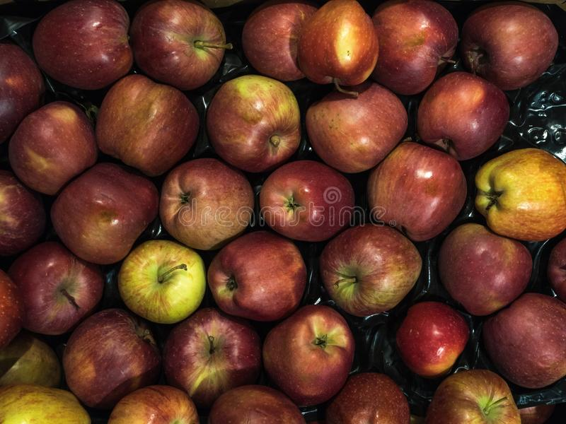 Many red delicious apples in a box in the store. Many red delicious apples in a box royalty free stock photo