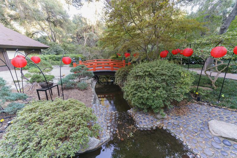 Many red lantern in Japanese garden of Descanso Garden. Preparing for the light up event royalty free stock photography