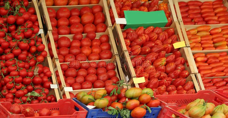 Ripe red tomato on sale in the grocery store in a mediterranean. Many red tomato in the boxes on sale in the grocery store in summer in a mediterranean country stock images