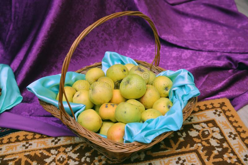 Many ripe apples in brown wicker basket closeup . Rich harvest: basket with fresh green apples royalty free stock photo